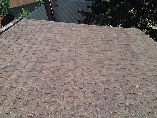 roof shingles services
